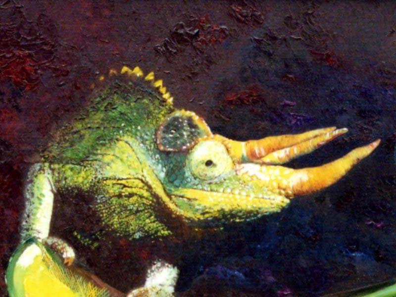 tableau représentant un caméléon